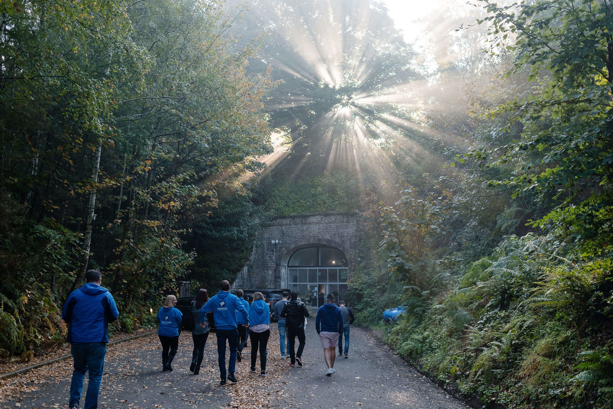 The Composite Profiles team approaching The Tunnel in Dorset with beautiful morning rays of sun shining through the trees