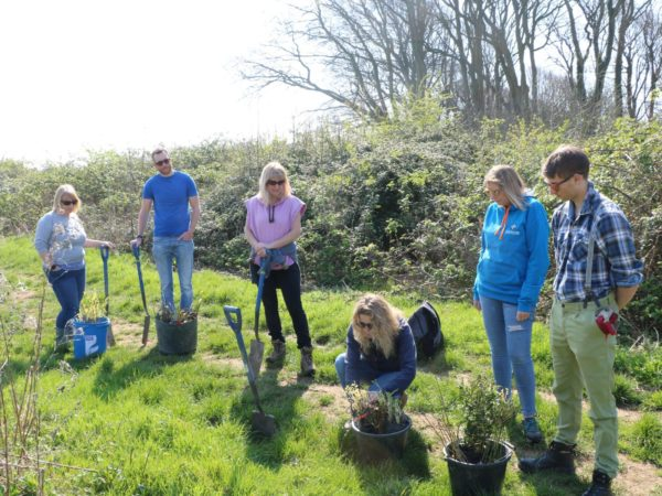 Planting trees at Lorton Meadows benefitting mental wellbeing